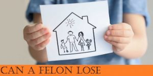 Can a felon lose parental rights?