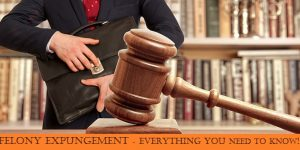 Felony Expungement