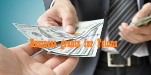 Business grants for Felons