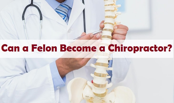 Can a Felon Become a Chiropractor?