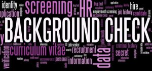 What is a Professional Background Check?