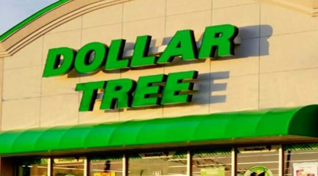 What Is Dollar Tree