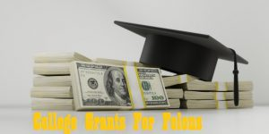 College Grants For Convicted Felons