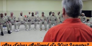 Are Felons Allowed to Visit Inmates in Custody (Answered)